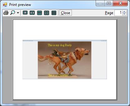 vb printing samples how to print a form in vb net